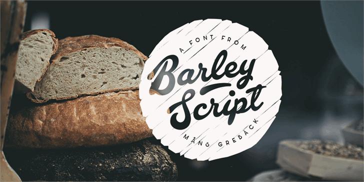 barley-script-font